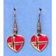 Norway Earrings - Hooks