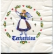 Luncheon Napkins - 16 pk Tervetuloa Girl