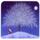 Coasters - Eva Melhuish Tree