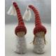 Gnome Tomte Pair