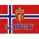 Norway Flag with Crest Notecards