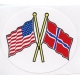 Decal - US & Norway  Flags